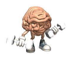muscular-brain