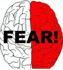 brain-on-fear